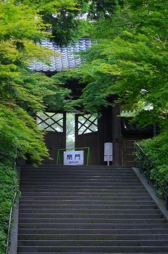 00北鎌倉s500_DSC_7906_.JPG