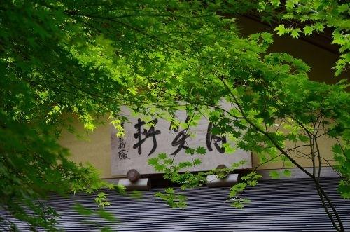 09茶屋s500_DSC_8103_.JPG