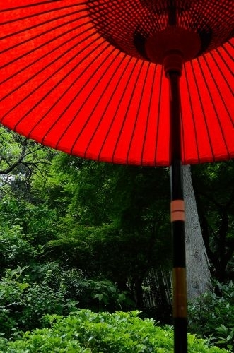 09茶屋s500_DSC_8171_.JPG