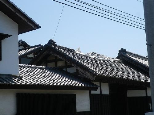 s-IMGP7937.JPG