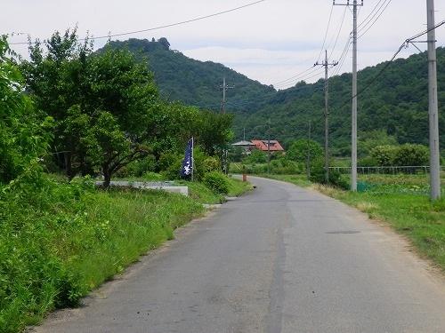 s-IMGP9998.jpg