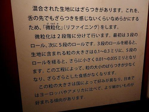s500_P1130106_.JPG